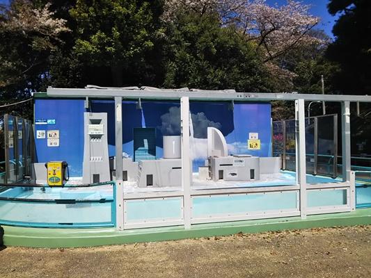 野毛山動物園 ペンギン