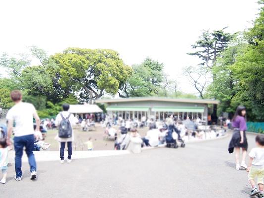 GW野毛山動物園